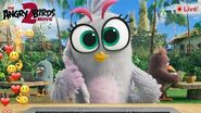 Angry Birds Movie 2 Live Stream Silver