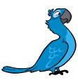 Blu bird-1-