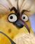 Flocker Yellow Portrait 023