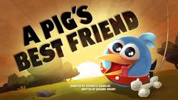 Лучший друг свиньи Плакат
