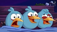 Angry Birds Toons 40 Jingle Yells.avi snapshot 01.02 -2013.12.16 01.19.44-