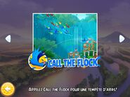 Инструкция по применению активатора Call the flock