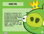 184px-King Pig Toy Care