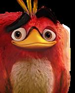 Flocker Red Portrait 005
