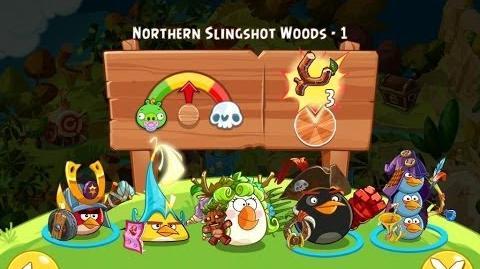 Northern Slingshot Woods - 1