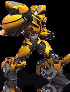 Bumblebee image1