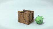 Свинья замечает коробку с кнопкой