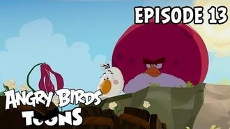 Angry Birds Toons Gardening with Terence - S1 Ep13