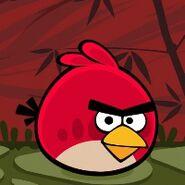 Angry-birds-seasons-cny-misc-icon