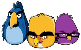 DeveloperBirds