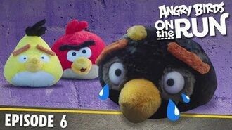 Angry Birds on The Run Breaking and Entering - S1 Ep6