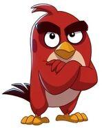 Red Angry Birds POP Blast
