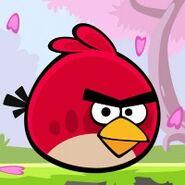 Angry-birds-seasons-blossom-icon-big