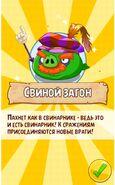 Свиной Загон-2
