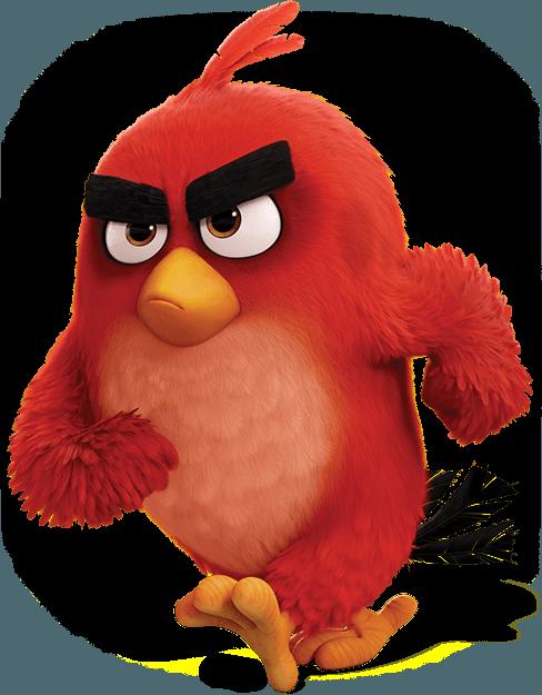 Angry Birds - YouTube