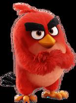 Bird red-0