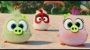 Angry Birds 2 в кино - с 15 августа-2