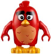 http://es.angrybirds.wikia.com/wiki/Archivo:LEGORed1