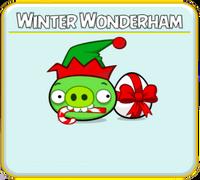 Winter Wonderham