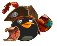 Bomb Pirate Transparent