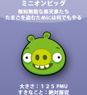 Minion Pig JP