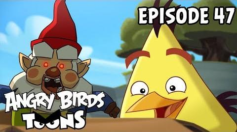Angry Birds Toons Oh Gnome! - S1 Ep47