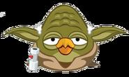 Yoda front
