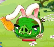 Кролик-громила