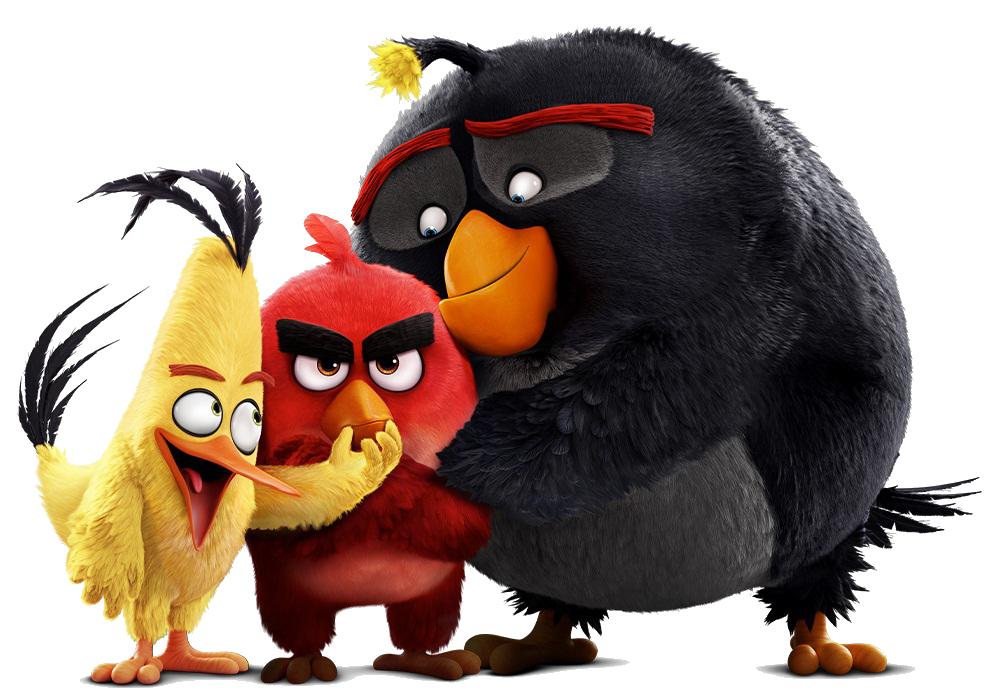 Image abmovie angry birds wiki fandom - Angry birds trio ...