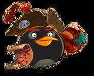 Пират есть пират