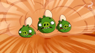 500px-GATE CRASHER PIGS GOT EGGS