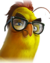 Flocker Yellow Portrait 048