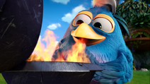 Angry Birds Blues Greg Cooking
