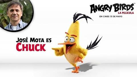 ANGRY BIRDS LA PELÍCULA. José Mota presenta a Chuck