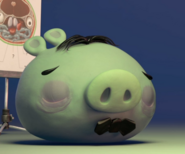 Tenor Pig chory