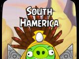 South Hamerica