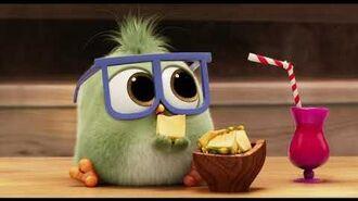 Adelanto Angry Birds 2- Eugenio Derbez