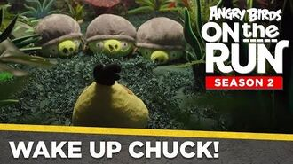 Angry Birds On The Run Wake Up Chuck! - Ep3 S2