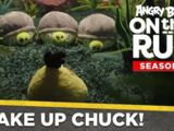 Wake Up Chuck!