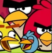 FlockFavorites