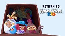 Angry birds return to rio