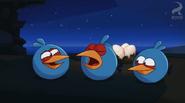 Синие смеются над Бомбом