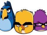 Ptaki Deweloperzy