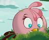 PinkBirdToons