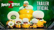 ANGRY BIRDS 2 LA PELÍCULA. Tráiler Oficial HD en español. En cines 23 de agosto.