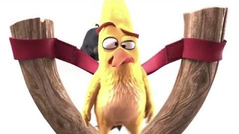 Citroen ♥︎ Angry Birds – C3 Mathilda