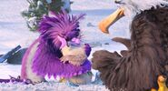 Zeta mighty eagle debbie