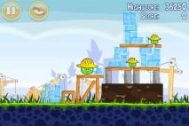 Angry-Birds-The-Big-Setup-9-2-213x142