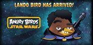 Angry-Birds-Star-Wars-Lando-Bird-e1371114562410