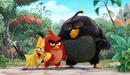 Angry Bird Movie Trio